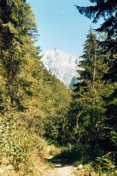 The path along Baldschiedertal